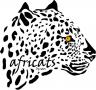 AfriCats-1